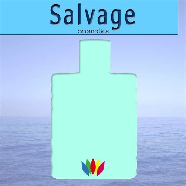 Perfume equivalente Salvage